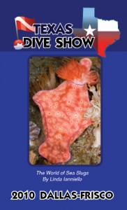 TexasShowGuide2010